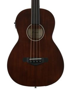 Ibanez AVNB1FE-BV Fretless Parlor Acoustic/Electric Bass Brown Violin TGF11
