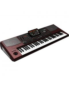 Korg PA1000 61-Key Professional Arranger Keyboard TGF11