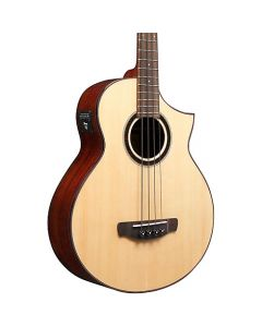 Ibanez AEWB20NT 4-string Acoustic Bass Guitar TGF11