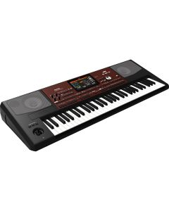 Korg PA700 Professional Arranger 61-Key Keyboard TGF33